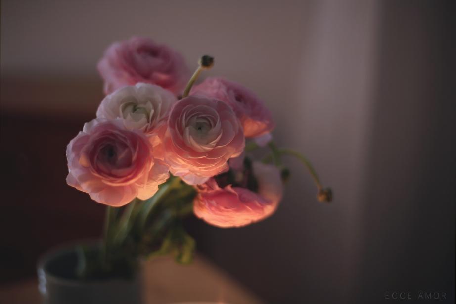 Fleurs Recueillement - Ecce Amor