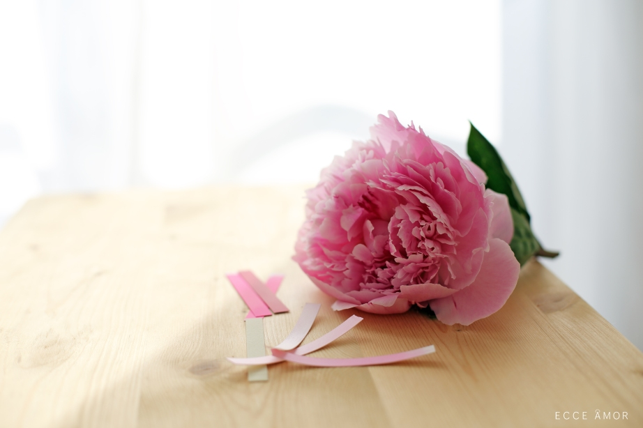 Couleur Rose Pivoine - Ecce Amor