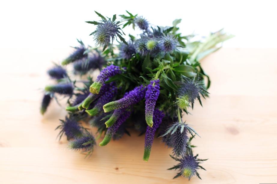 Fleurs couleur Careme - Ecce Amor